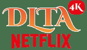 NETFLIX-1-300x172